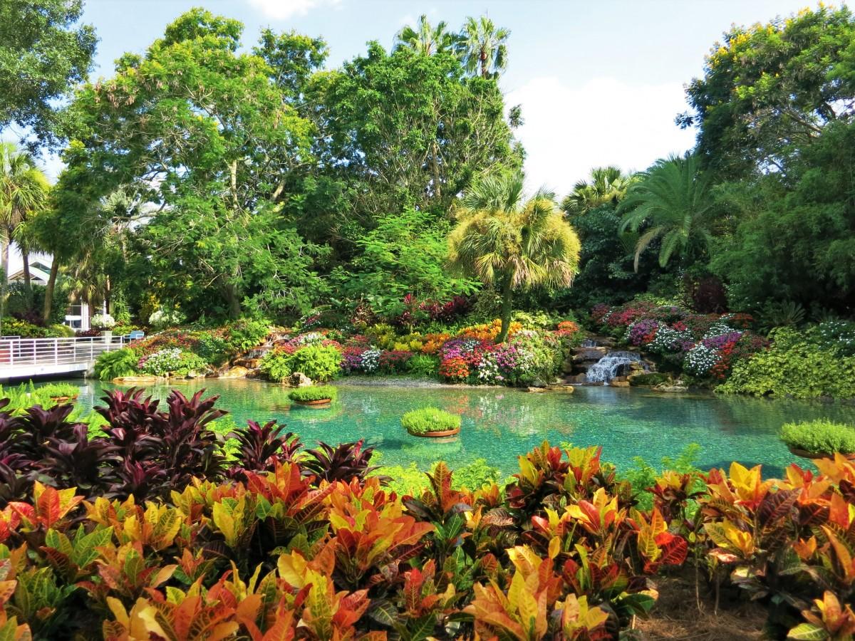 bassin jardin eau claire