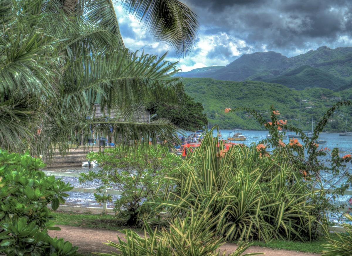 vue panoramique jardin