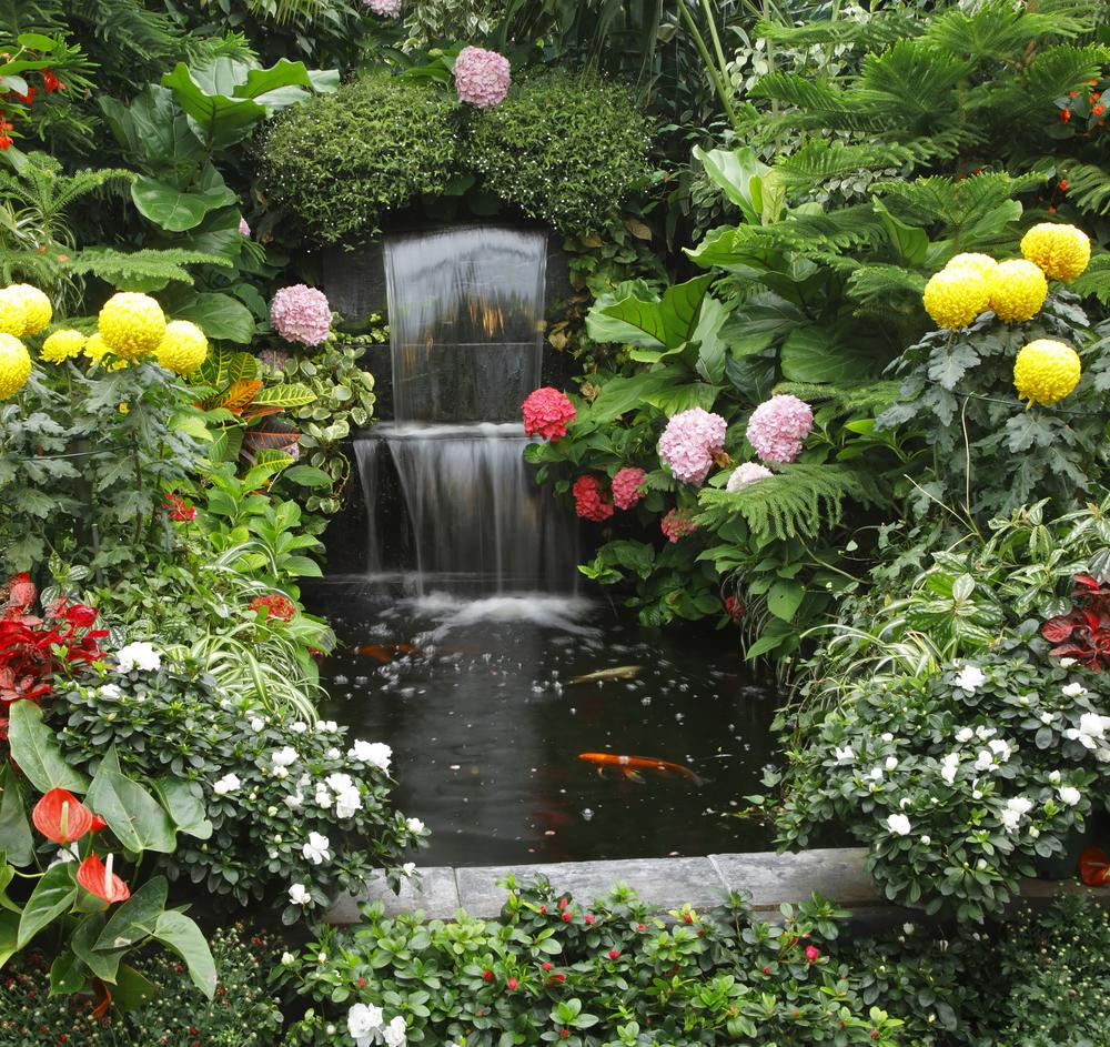 bassin printemps